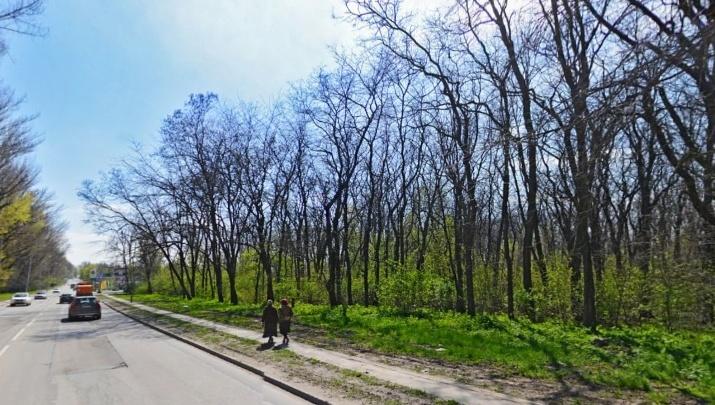 Два участка возле Александровской рощи в Ростове незаконно отдали под застройку