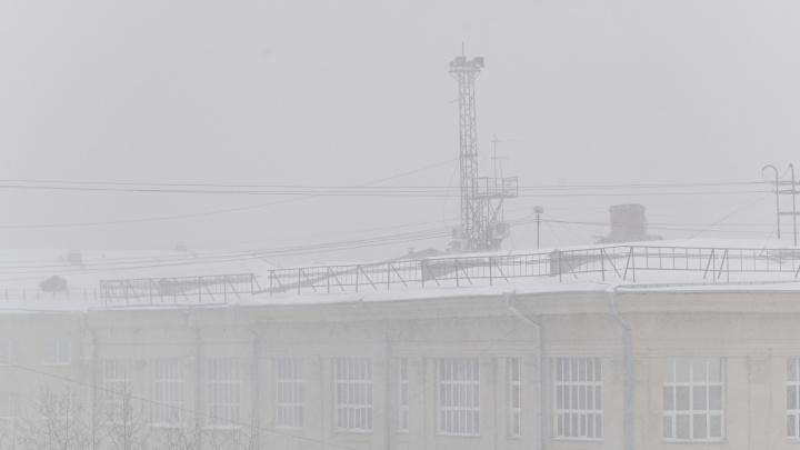«Пока оттепелей не видно»: новосибирцев ждет температура до -20градусов