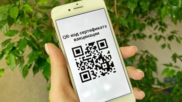 Код для входа. Сравниваем, как работают QR-пропуска в Новосибирске и других городах