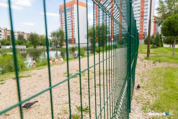 Территорию между домами облагородили, но обнесли забором