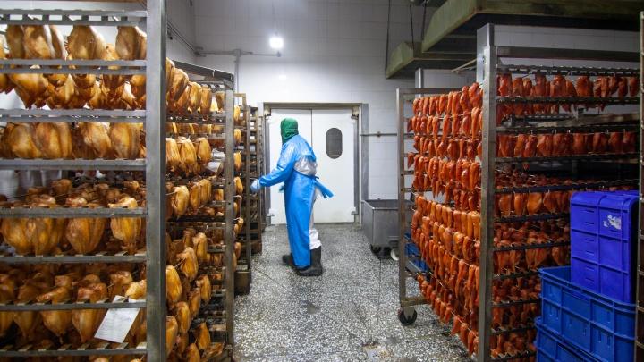 45 лет создают вкус: репортаж с птицефабрики «Тюменский бройлер»