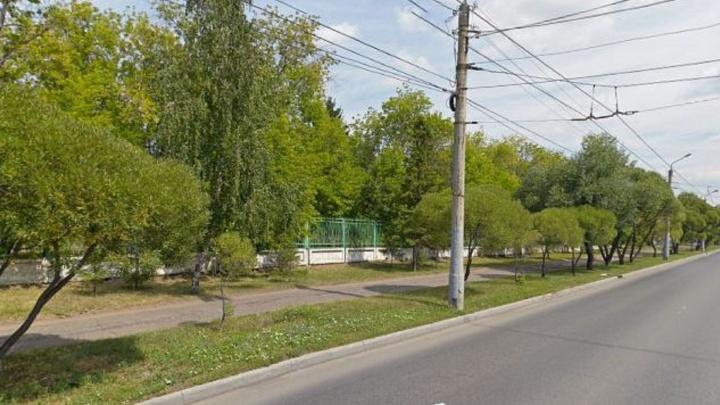 Рядом с Парком 30-летия ВЛКСМ планируют снести 32 тополя, чтобы обустроить парковку