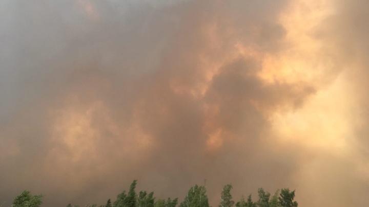 Лесной пожар подобрался к поселку на юге Челябинской области. Люди в панике