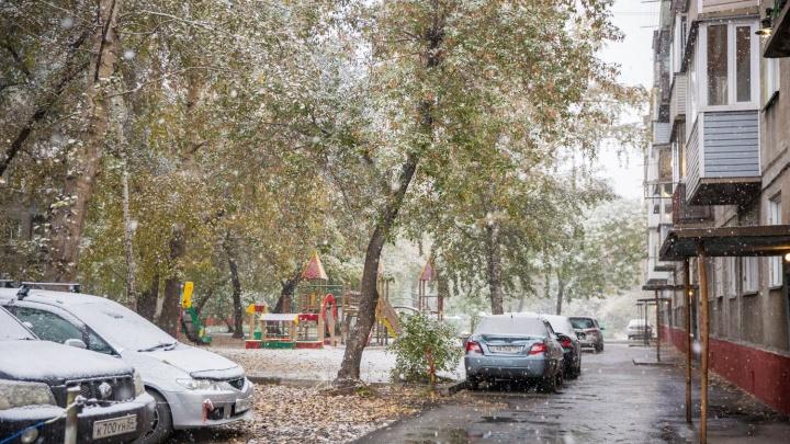 Когда ждать первый снег в Новосибирске? Сравниваем разные прогнозы