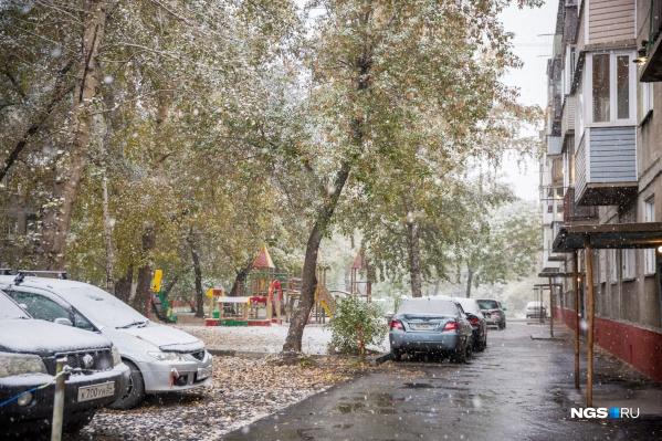 Сервисы называют разные даты начала снегопада