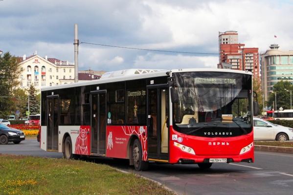 Автобусов станет больше, а время их ожидания сократится