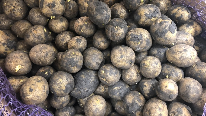 Больно смотреть на цены: в Тюменской области картошка дороже, чем в среднем по стране