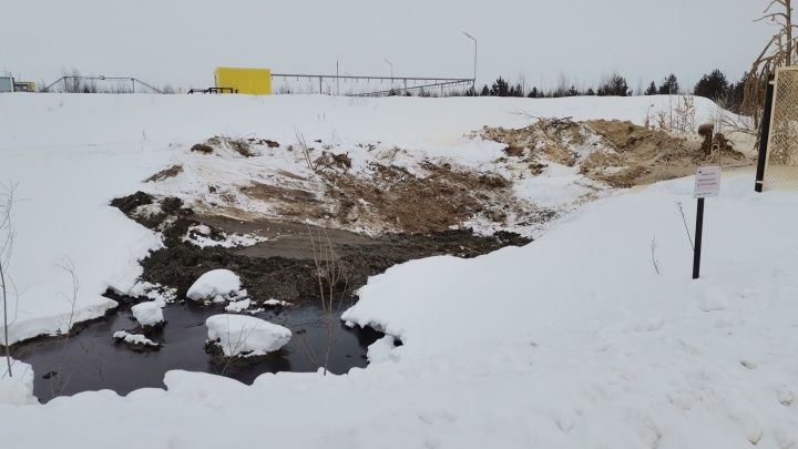 В Нижневартовском районе разлилась вода, загрязненная нефтью. Жители опасаются отравления озера