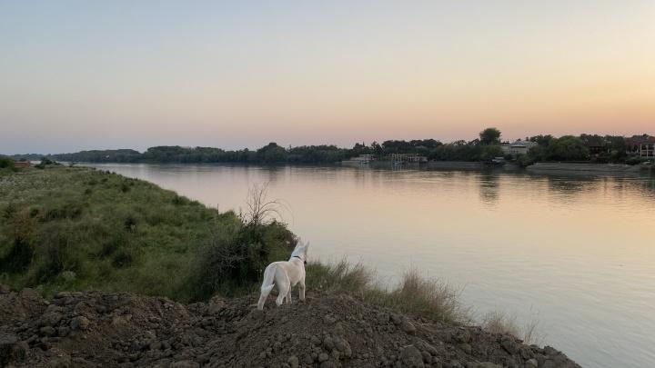 Еще суше, чем обычно. На Кубани будет непривычно жарко весь август