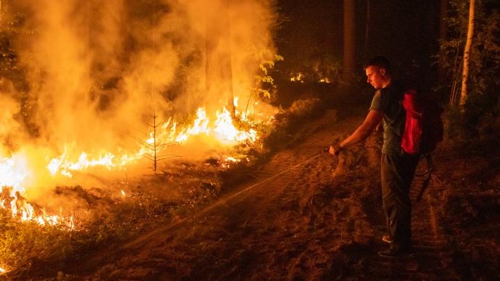 Под Екатеринбургом тушат пожар, поджигая лес. Разбираемся, что такое встречный пал и как он работает