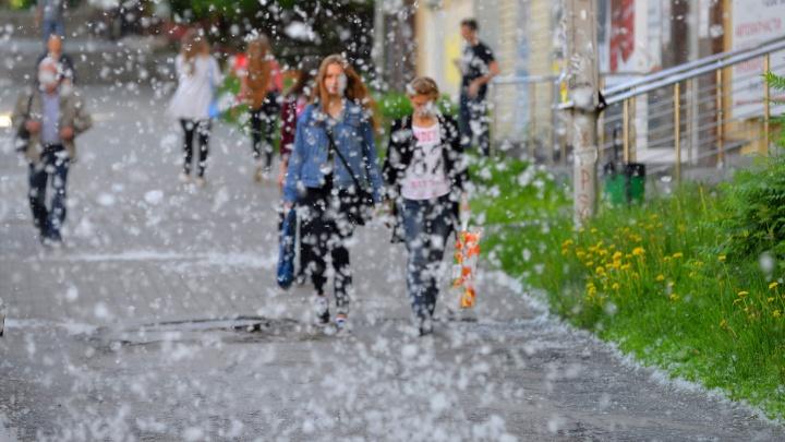 Будет ли жара в Екатеринбурге? Прогноз синоптиков на выходные