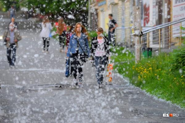 Дождей в выходные не ожидается, а значит, тополиного пуха в воздухе будет много