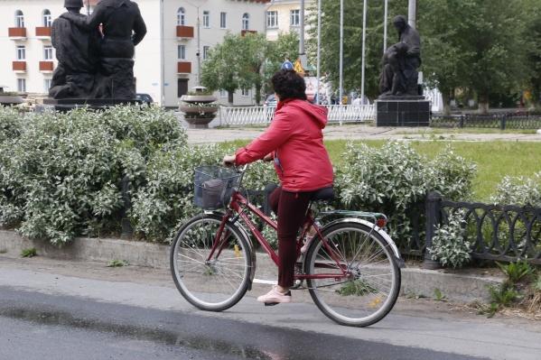 Каждый год жители Новодвинска предлагают свои идеи, как сделать город лучше, чище, экологичнее