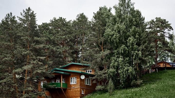 Терраса на склоне, экотропы и даже музей: в «Кулига-Парк» открыли летний сезон — там появилось много нового