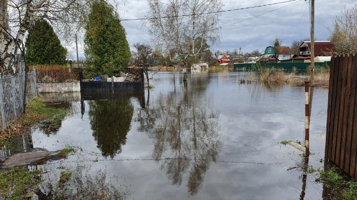 Идет холостой сброс воды: как в Ярославской области топит дачные поселки. Интерактивная карта