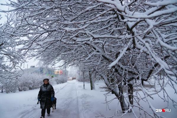 Практически всю неделю будет идти небольшой снег