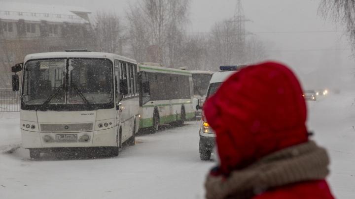 Корректировки транспортной реформы: мэр Ярославля рассказал, какие маршруты решили сохранить