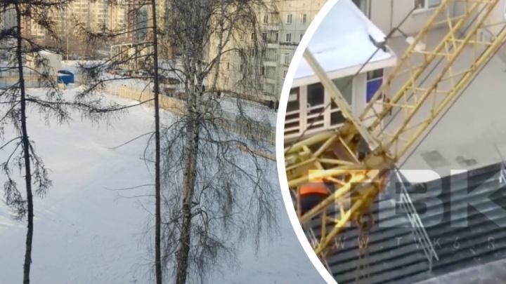 Строительный кран упал на стройке онкоцентра в Красноярске. Названы причины инцидента