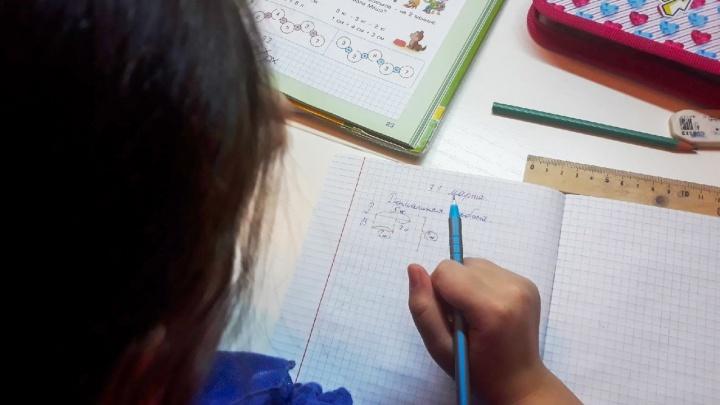 Родителям самарских школьников хотят вернуть деньги за обучение детей