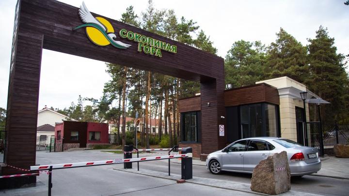 Локдаун под кронами сосен: челябинцам предложили 4 квартиры в «мини-санатории» в 20 минутах от города