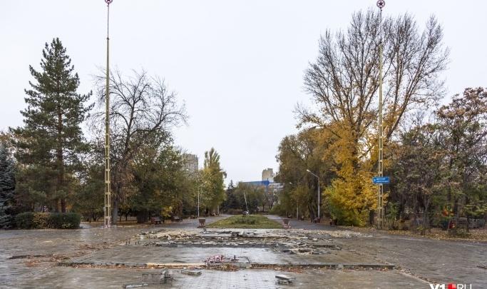 В Волгограде решили вырубить 200 деревьев при реконструкции Горсада