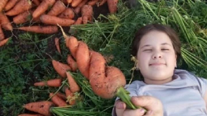 Морковь теперь как евро: цены на овощи в Свердловской области продолжают расти