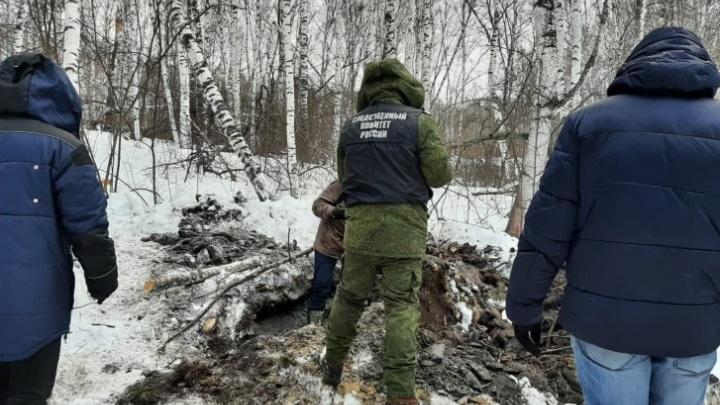 В лесополосе под Уяром найдены останки 6-летней девочки. Мать-наркоманка бросила ее у подруги