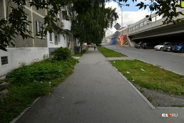Мусором завалены территории вокруг центральных улиц города