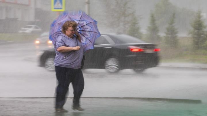 Сильный ветер ворвался в Красноярск раньше прогнозируемого срока