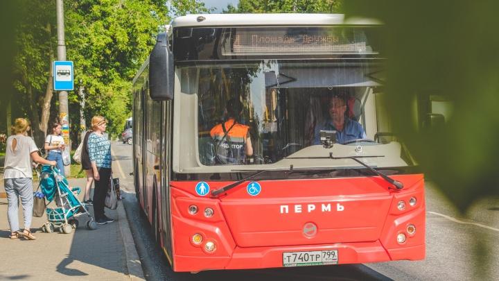 Дептранс предупредил пермяков о возможных сбоях оплаты проезда