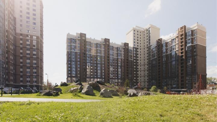 Осталось 13 квартир: квадратные метры с видом на сосновый бор разлетаются быстро