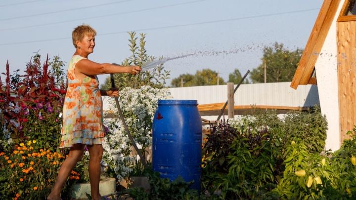 Как поливать огород и не разориться на оплате воды в Волгограде: смотрите инструкцию