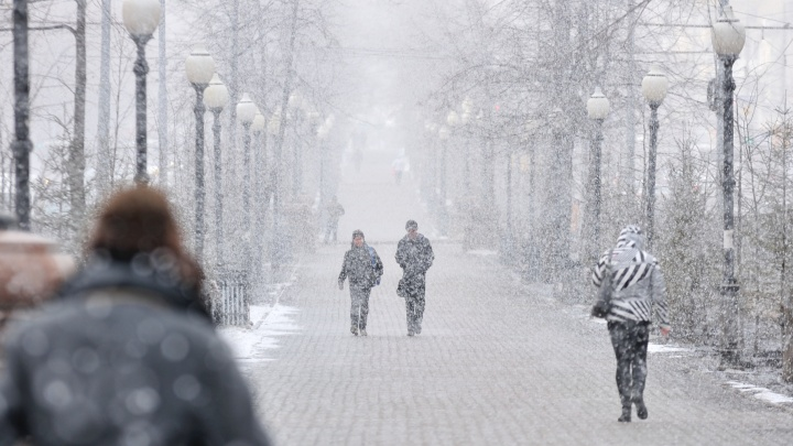 Главный синоптик рассказала, когда в Екатеринбурге выпадет первый снег