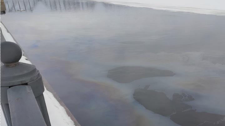 В Ярославле зафиксировали почти четырехкратное превышение нефтепродуктов в Волге
