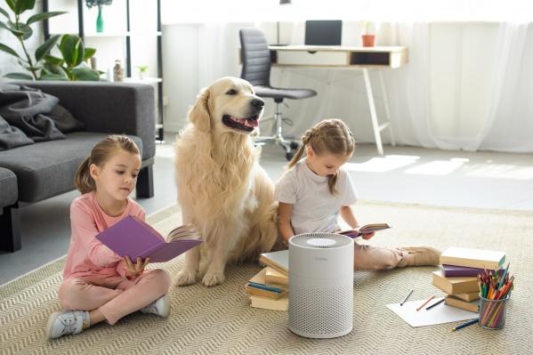 Технологичные решения позволяют очистить воздух в квартире от различных загрязнений, включая вирусы и бактерии