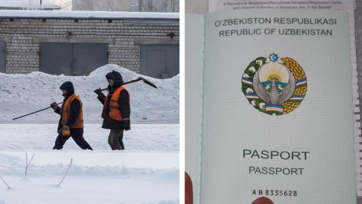 Девушка из Архангельска принимала экзамены у узбеков. Ее обвиняют в организации незаконной миграции