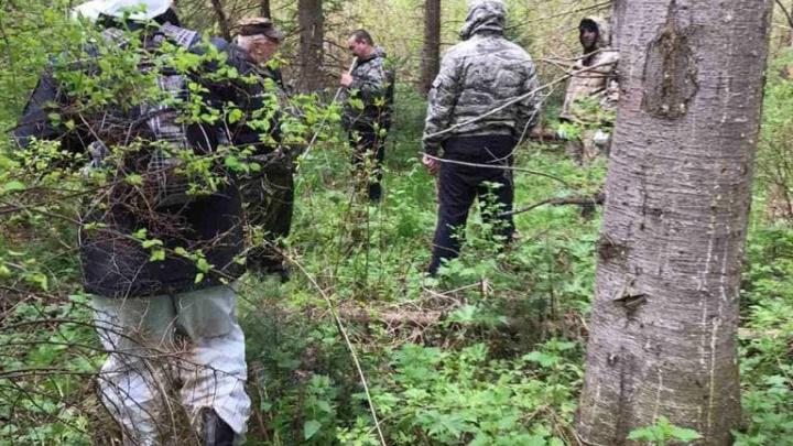 Ушедшего в лес за черемшой школьника искали более 12 часов