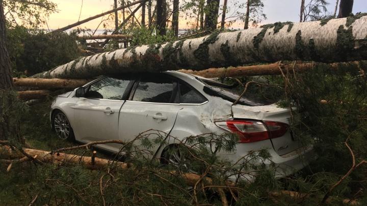 Разбитые машины и перекрытые деревьями трассы: смотрим на последствия урагана в Нижегородской области