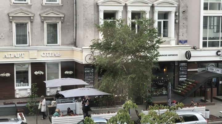 Посреди дня неадекватный мужчина напал на кассира в кафе