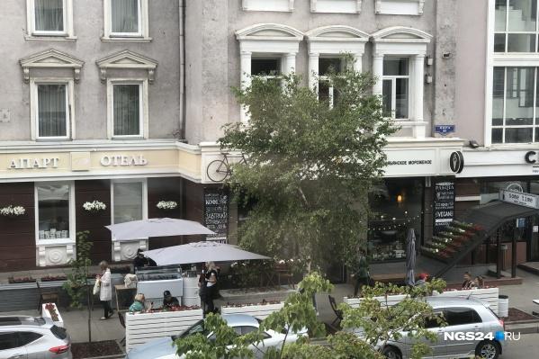 "Кафе А'Roma на <nobr class=""_"">Мира, 81</nobr>"