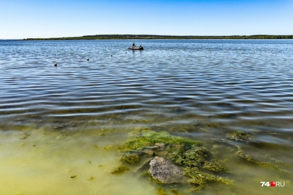 Пробы воды брали в июле на четырех пляжах