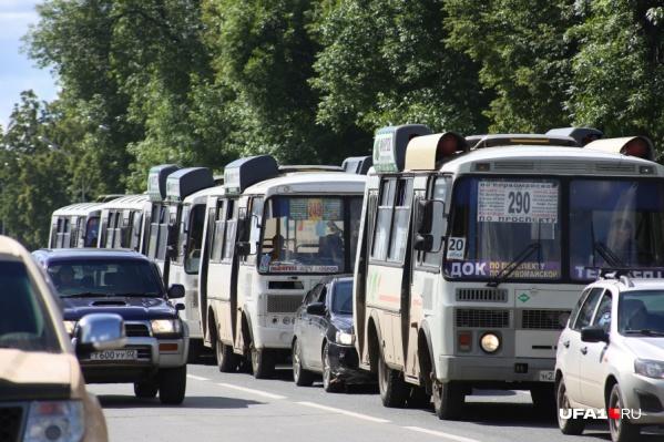 Власти планируют добавить 19 новых автобусов