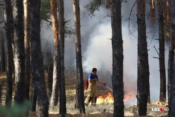 В сентябре 2020 года в Ростовской области вспыхнули сильные лесные пожары