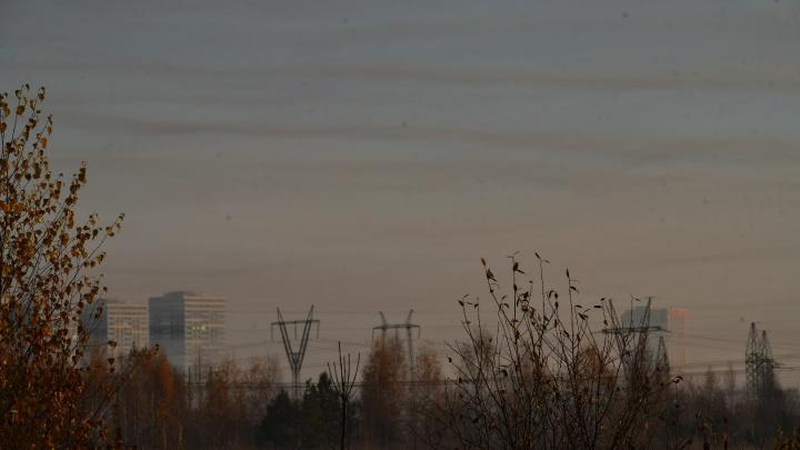 В каких районах Екатеринбурга обнаружен загрязненный воздух: публикуем карту