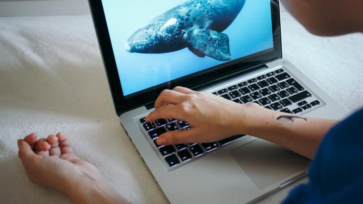 «Синий кит» опять всплыл? В России за неделю случилась вспышка детских суицидов