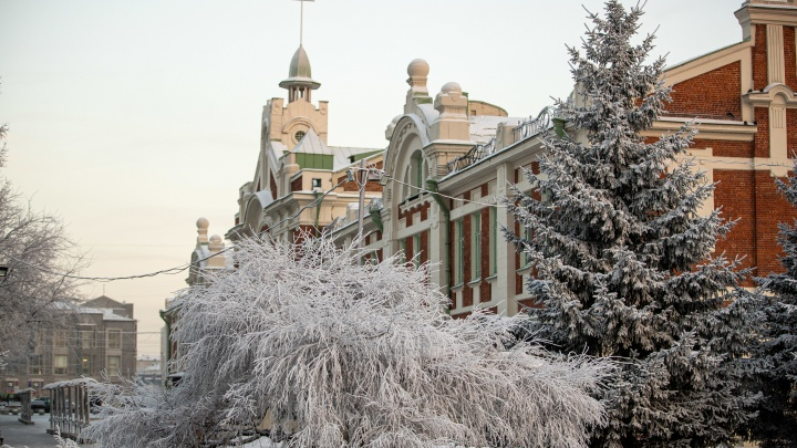 Новосибирцев предупредили о возвращении морозов до -28градусов