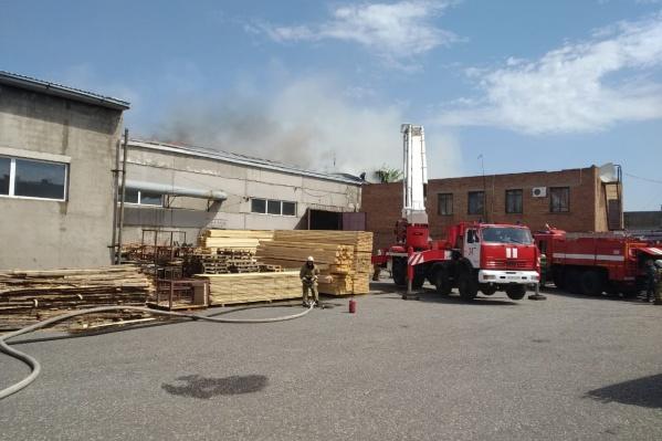 Площадь пожара составила 2000 кв. м