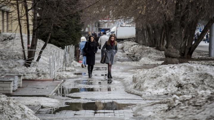 Синоптики рассказали, когда новосибирцев ждет похолодание и ветер до 16м/с
