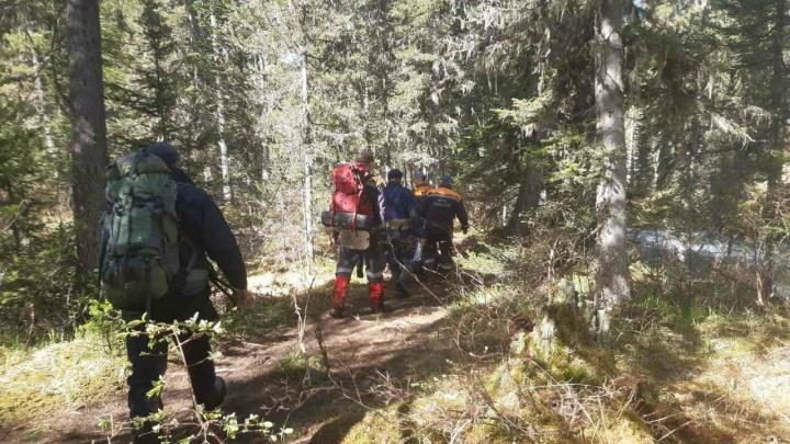 Из «Ергаков» вывели столкнувшуюся с медведем туристическую группу