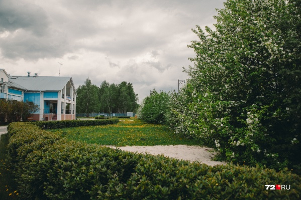Общая площадь Затюменского парка достигает 100 гектаров